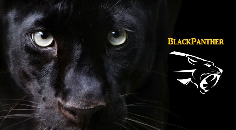 年利43%!BlackPanther USDJPYがもうすぐ値上がりします…!